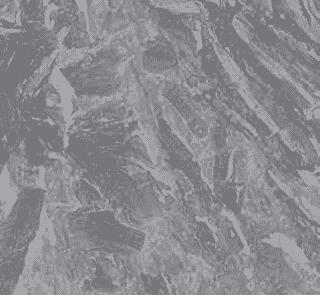 orobico grigio